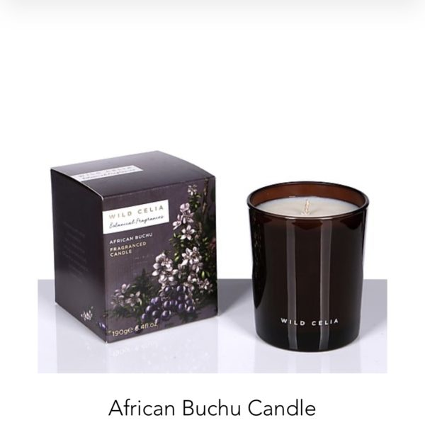 African Buchu Candle -WILD CELIA -ASBYAS