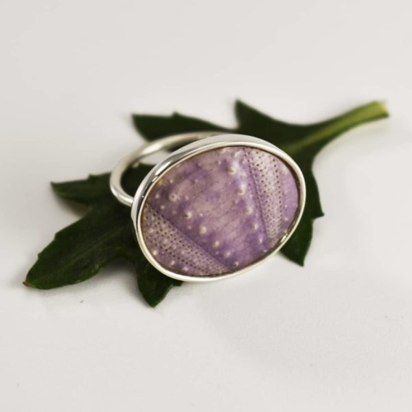 Big Purple Sea Urchin Ring-KINKEL -ASBYAS